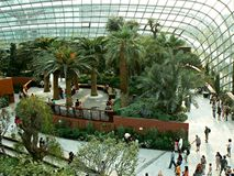 Interior of nature conservatory Stock Images