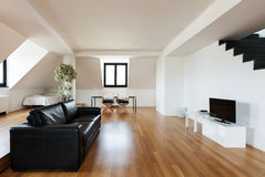 Interior, new loft. Interior, beautiful loft, hardwood floor, view living room Stock Images