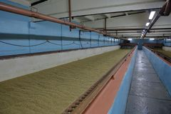 Inside the old malt house. The interior of an old brewery room for drying fresh malt royalty free stock photo