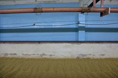 Inside the old malt house. The interior of an old brewery room for drying fresh malt royalty free stock image