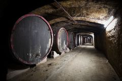 Interior of an old wine cellar, barrels Stock Photo