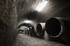 Interior of an old wine cellar, barrels Stock Images