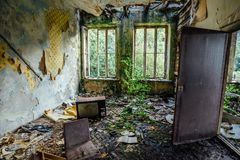 Interior of overgrown room of abandoned and forsaken apartment house. Interior of overgrown by vegetation room of abandoned and forsaken apartment house. Green Stock Photography