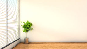 Interior with plant and blinds. 3D illustration Royalty Free Stock Photo