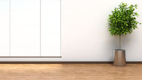 Interior with plant and blinds. 3D illustration Stock Photos