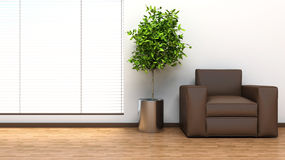 Interior with plant and blinds. 3D illustration Royalty Free Stock Image