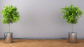 Interior with plant. 3D illustration Royalty Free Stock Photo