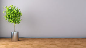 Interior with plant. 3D illustration Royalty Free Stock Photos