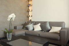 Interior residencial de la sala de estar moderna Imágenes de archivo libres de regalías