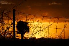 Interior resplandor australiano de la puesta del sol de la paz y de la tranquilidad que traen anaranjadas y rojas Fotos de archivo libres de regalías