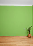 Interior room with wooden floor and wall in green with an electrical contact in the wall and wooden skirting Royalty Free Stock Image