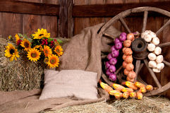 Interior of a rural farm - hay, wheel, garlic, onions, sunflower Royalty Free Stock Photos
