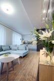 Interior - sitting room Royalty Free Stock Image