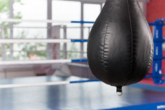 Interior of spacious gym with punching bags. Royalty Free Stock Photos