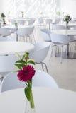 Interior of summer restaurant Stock Image