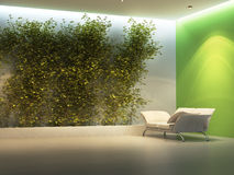 Interior vacío con la planta Imágenes de archivo libres de regalías