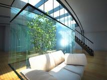 Interior vazio moderno com planta e sofá Fotos de Stock Royalty Free