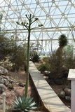 Interior view of the Biosphere 2. Arizona, U.S.A stock images