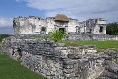 Interior View of Mayan Palace Ruins at Tulum. Photo of the Mayan palace ruins taken from base of stairs looking toward the interior showing columns and thatched royalty free stock photo