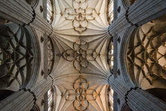 Interior view of Salamanca Cathedral Stock Images