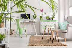 Interior with a white desk, mint chair, chest of drawers and armchair. Shot of a full of light interior with a white desk, mint chair, chest of drawers and a Royalty Free Stock Photos