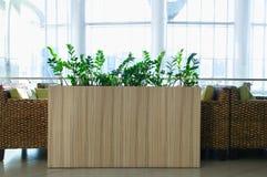 Interiore del caff? Tabelle e presidenze del rattan Piante ornamentali immagini stock libere da diritti