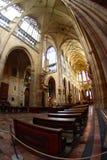 Interiore della cattedrale gotica Fotografia Stock Libera da Diritti