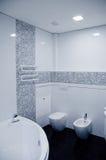 Interiore della stanza da bagno Fotografie Stock Libere da Diritti