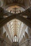 Interiore di bella cattedrale gotica dei pozzi Fotografie Stock Libere da Diritti