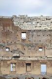 Interiore di Colosseum Fotografie Stock