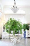 Interiore di lusso in salone Fotografie Stock Libere da Diritti