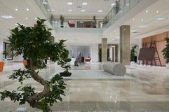 Interiore minimalista Immagine Stock Libera da Diritti