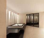 Interiors, bathroom with jacuzzi Stock Photography