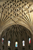 Interiors of a gothic cathedral Stock Image