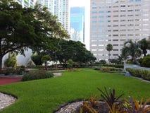 Interkontinentalt Miami hotell royaltyfri bild