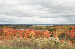 Interlochen Michigan Autumn Landscape Stock Photography