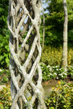 Interlock. Ing plant branches design for garden decoration Royalty Free Stock Photo