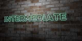 INTERMEDIATE - Glowing Neon Sign on stonework wall - 3D rendered royalty free stock illustration. Can be used for online banner ads and direct mailers Stock Image