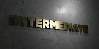 Intermediate - Gold text on black background - 3D rendered royalty free stock picture. This image can be used for an online website banner ad or a print Royalty Free Stock Images