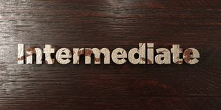 Intermediate - grungy wooden headline on Maple  - 3D rendered royalty free stock image. This image can be used for an online website banner ad or a print Royalty Free Stock Photos