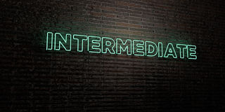INTERMEDIATE -Realistic Neon Sign on Brick Wall background - 3D rendered royalty free stock image. Can be used for online banner ads and direct mailers Stock Image