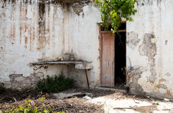 Internal  country yard of an Abandoned village house Royalty Free Stock Image