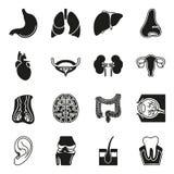 Internal human organs icons set. In black simple design style. Vector illustration on white background Stock Illustration