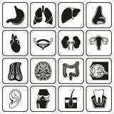 Internal human organs icons set. In black symple design style. Vector illustration on white background Stock Illustration