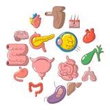 Internal human organs icons set, cartoon style. Internal human organs icons set. Cartoon illustration of 16 internal human organs vector icons for web Royalty Free Stock Photos