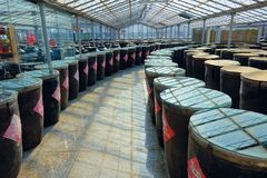 Vinegar storage room. The internal scenery of Storage room of Baoyuan Vinegar Factory in Qinxu, Shanxi, China Stock Photos