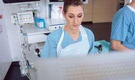 Internal specialist doctor looking at screen mid examination. In a modern hospital Royalty Free Stock Photo