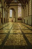 Internal view of gothic church with artistic interference in Amsterdam. Stock Images