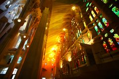 Internal view of Sagrada Familia royalty free stock images