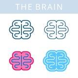 Internals ikony Mózg i cerebrum konturu wektorowi symbole ilustracji
